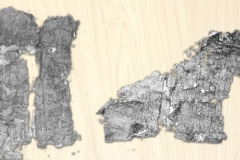 Fragments of carbonized Herculaneum papyri.